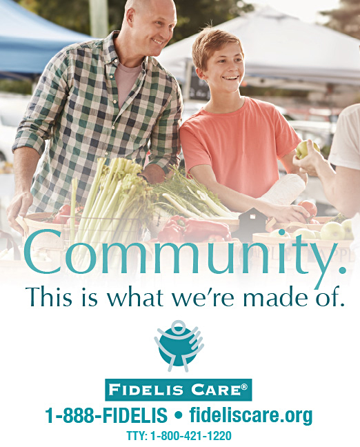 Click here to go to the Fidelis Care Long Island website