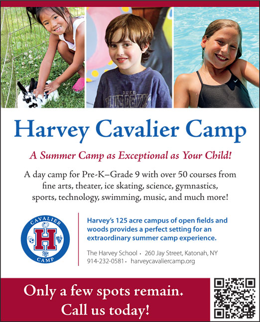 Click here to go to the Harvey Camp website