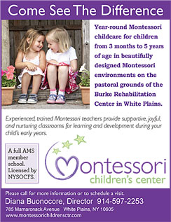Click here to go to the Montessori at Burke website