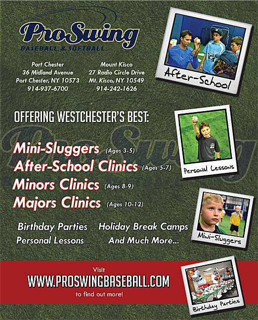 Click here to go to the Prowswing website