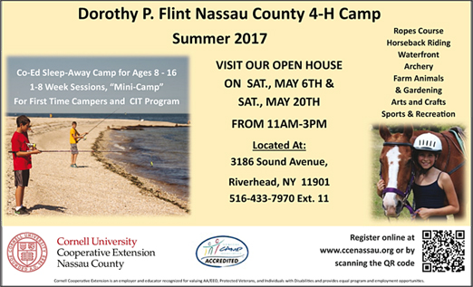 Click here to go to the Dorothy P. Flint 4-H Camp website