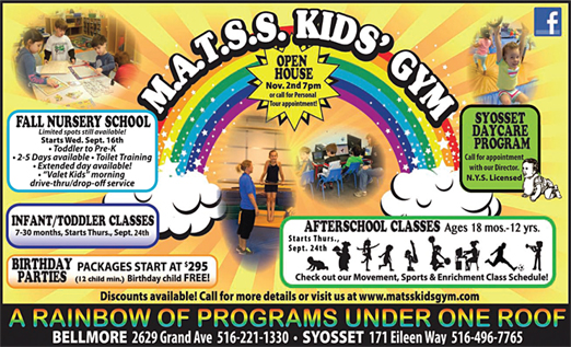Click here to go to the M.A.T.S.S. Kids' Gym website